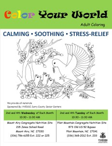 Adult Coloring Flyer 2016